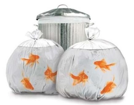 goldfish.trashbags